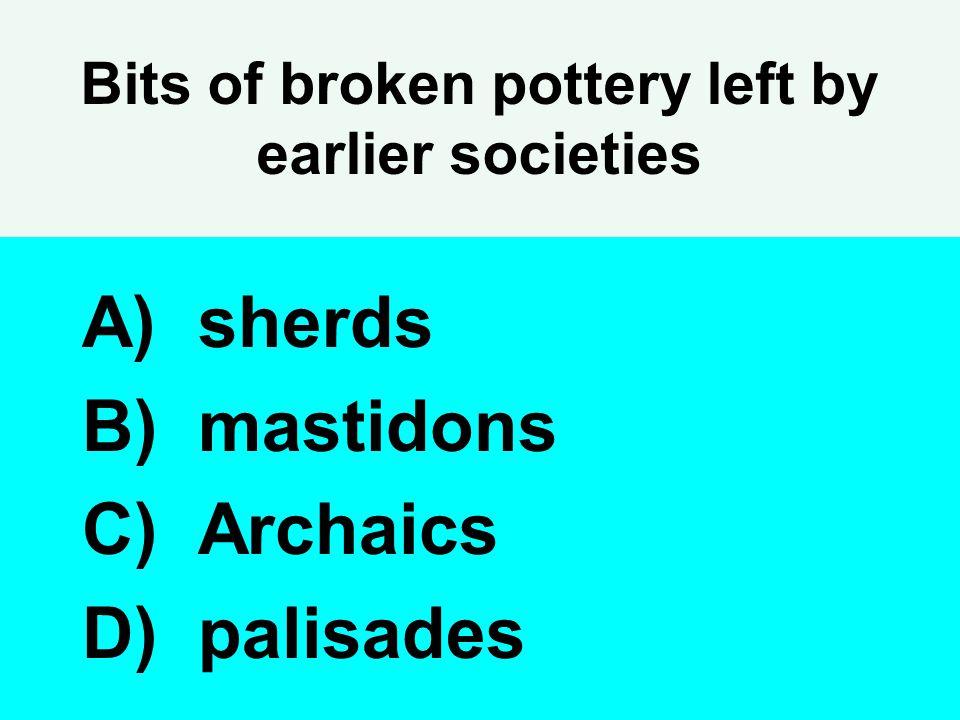 Bits of broken pottery left by earlier societies