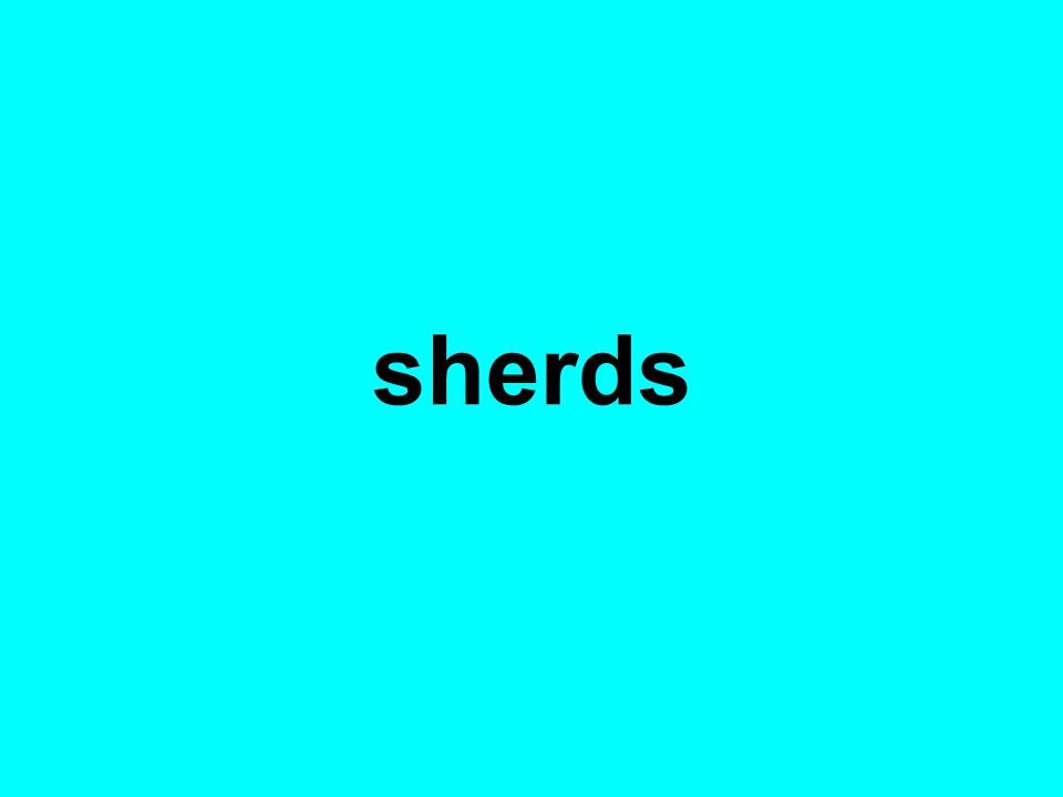 sherds