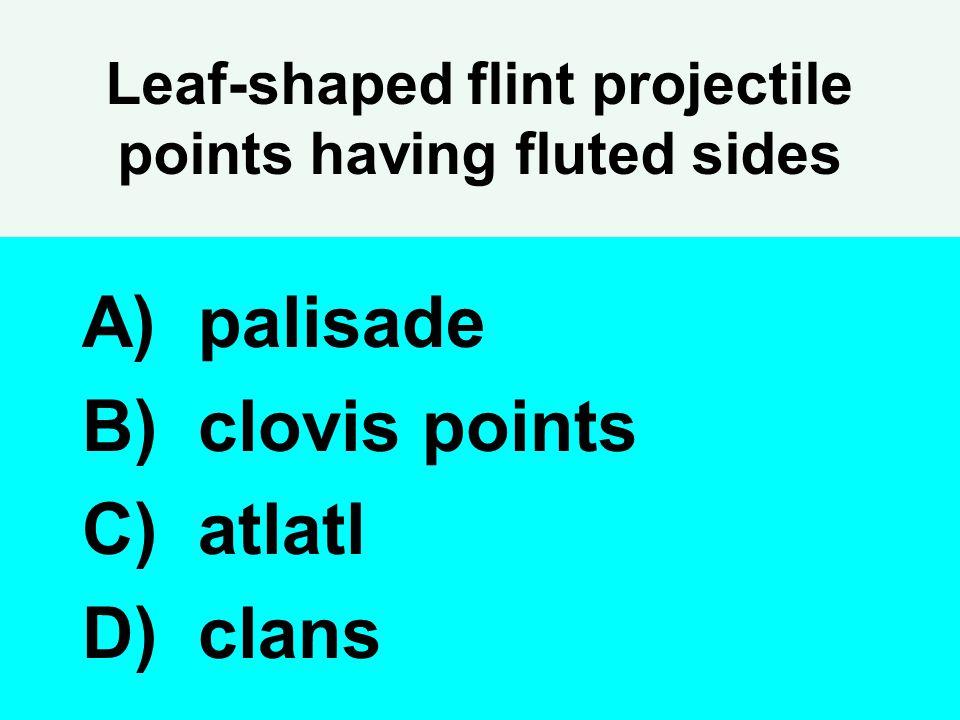 Leaf-shaped flint projectile points having fluted sides