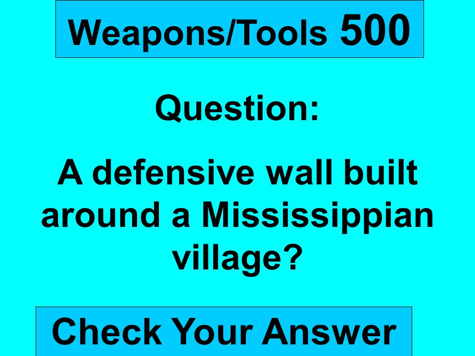 A defensive wall built around a Mississippian village