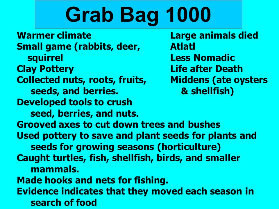 Grab Bag 1000 Warmer climate Large animals died