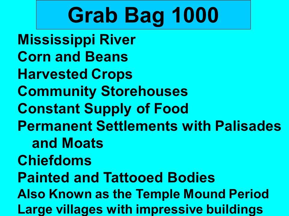 Grab Bag 1000 Mississippi River Corn and Beans Harvested Crops