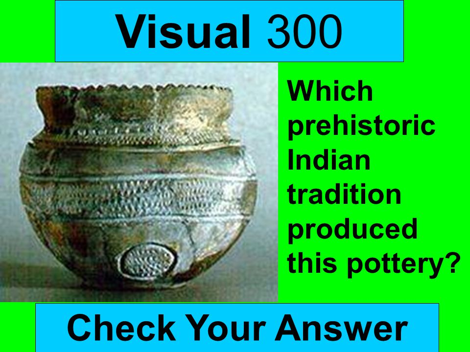 Visual 300 Check Your Answer