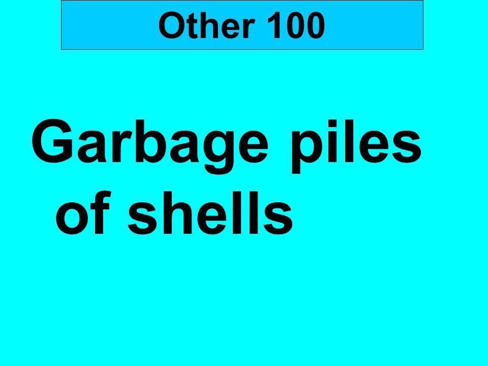Garbage piles of shells