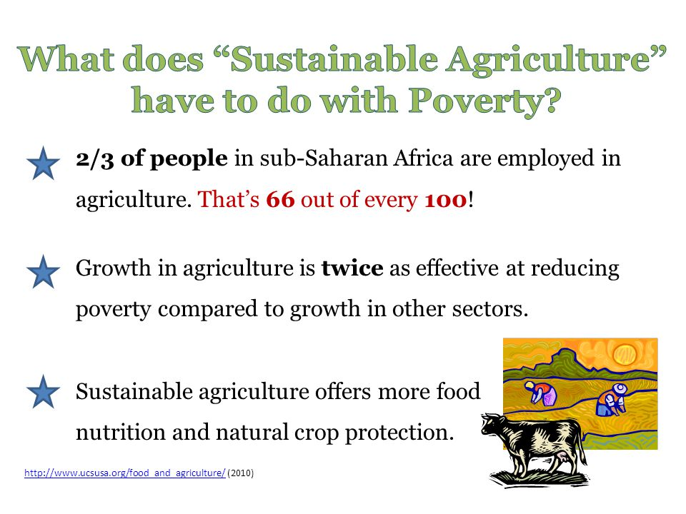 What does Sustainable Agriculture