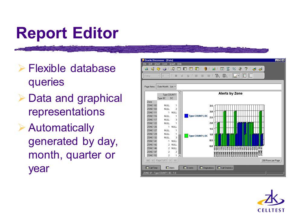 Report Editor Flexible database queries