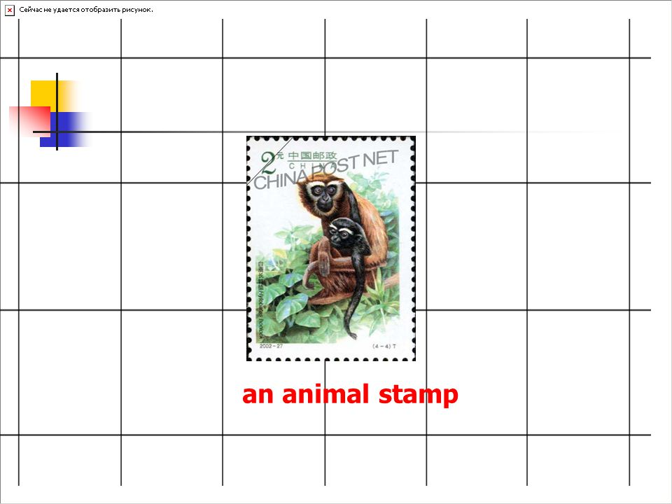 an animal stamp