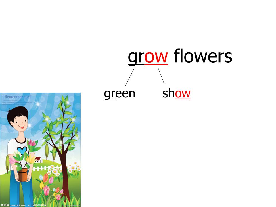 grow flowers green show