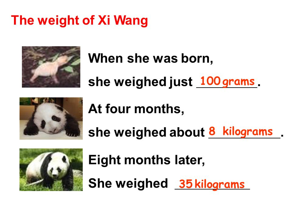 The weight of Xi Wang When she was born, she weighed just .