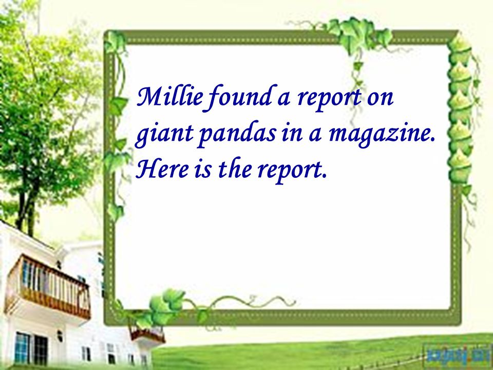 Millie found a report on giant pandas in a magazine.
