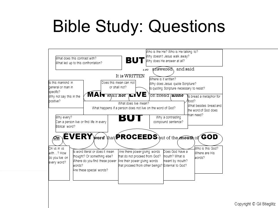 Bible Study: Questions