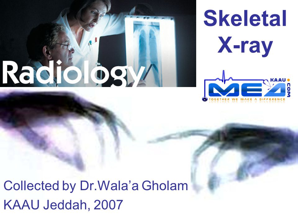Collected by Dr.Wala'a Gholam KAAU Jeddah, 2007