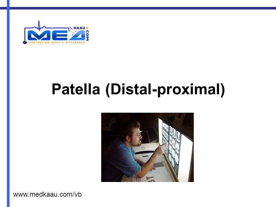 Patella (Distal-proximal)