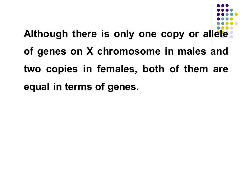 Although there is only one copy or allele of genes on X chromosome in males and two copies in females, both of them are equal in terms of genes.