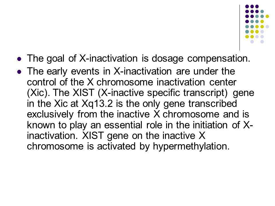 The goal of X-inactivation is dosage compensation.