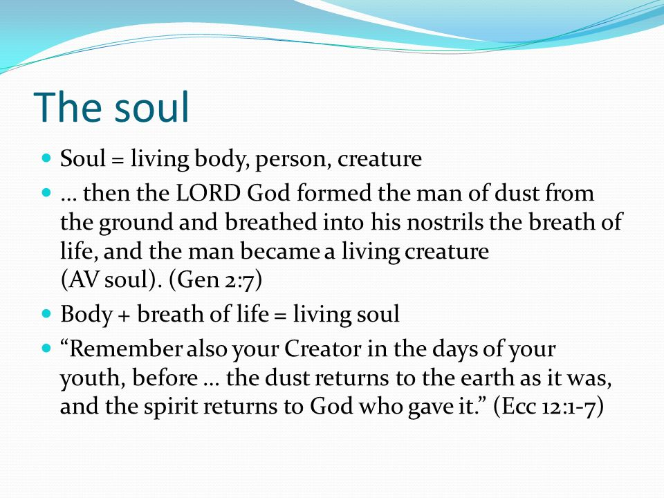 The soul Soul = living body, person, creature