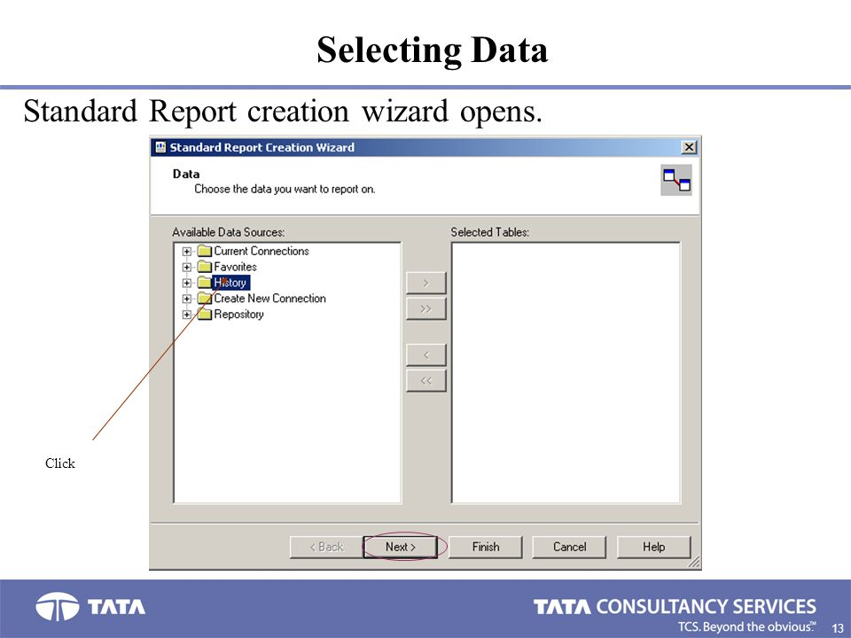 Selecting Data Standard Report creation wizard opens. Click