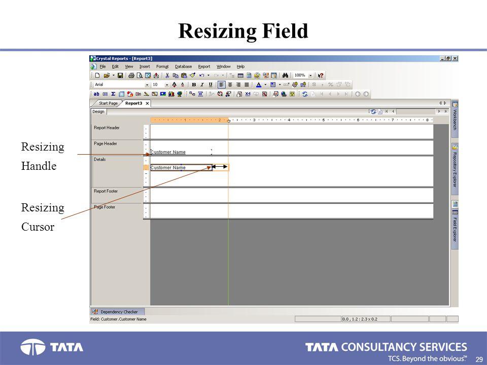 Resizing Field Resizing Handle Resizing Cursor