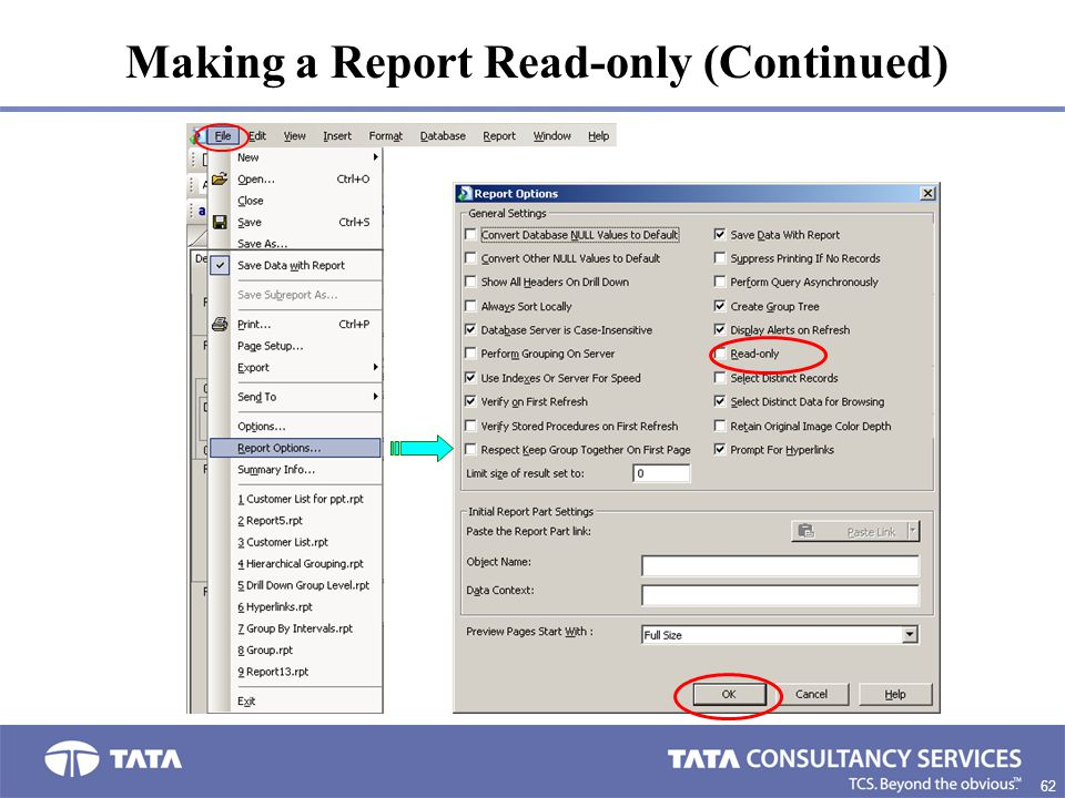 Making a Report Read-only (Continued)