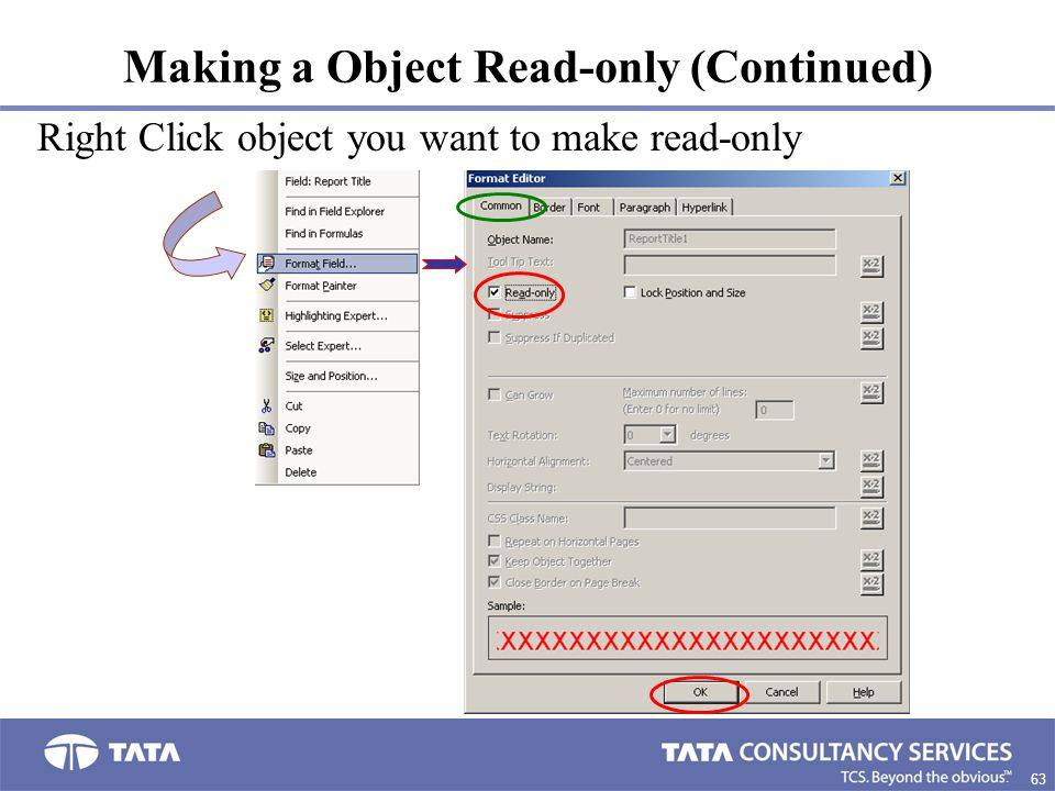 Making a Object Read-only (Continued)
