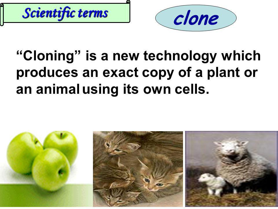 clone Scientific terms