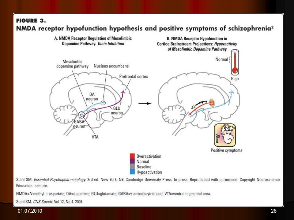 Role of Glutamate in the Mesolimbic System
