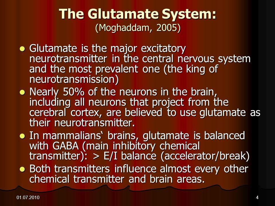 The Glutamate System: (Moghaddam, 2005)