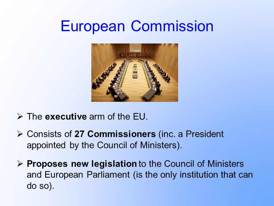European Commission The executive arm of the EU.