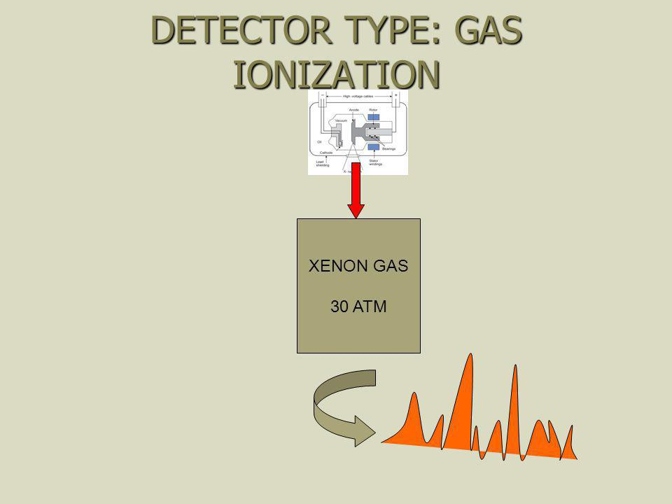 DETECTOR TYPE: GAS IONIZATION