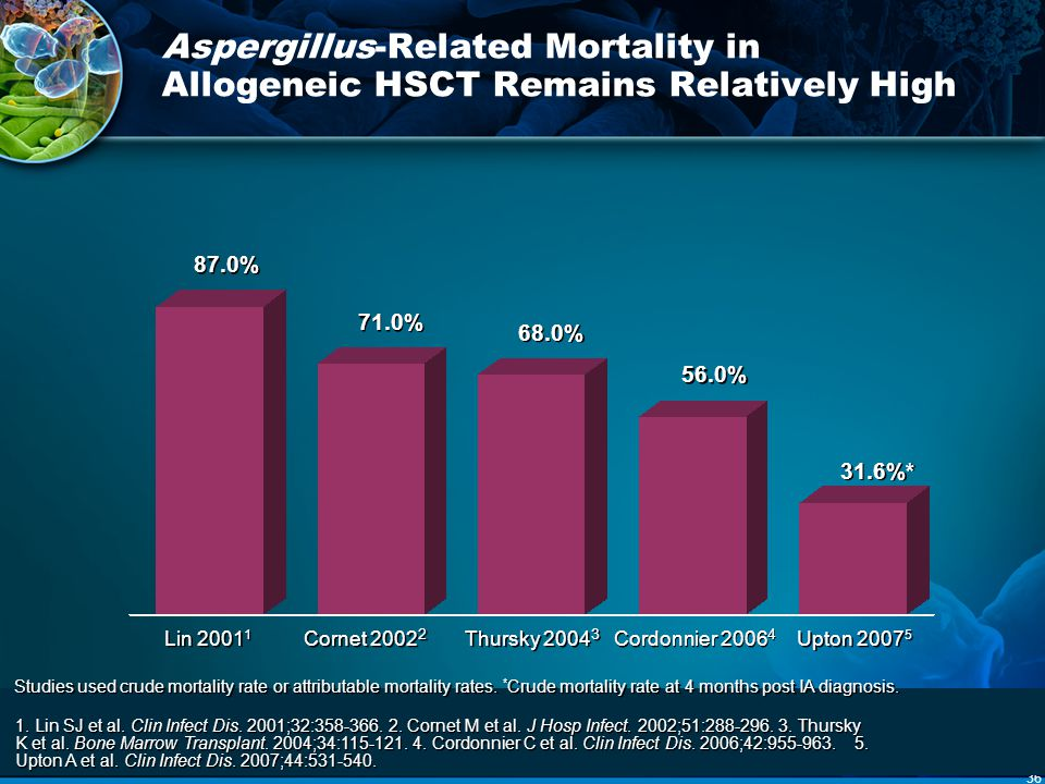 Aspergillus-Related Mortality in Allogeneic HSCT Remains Relatively High