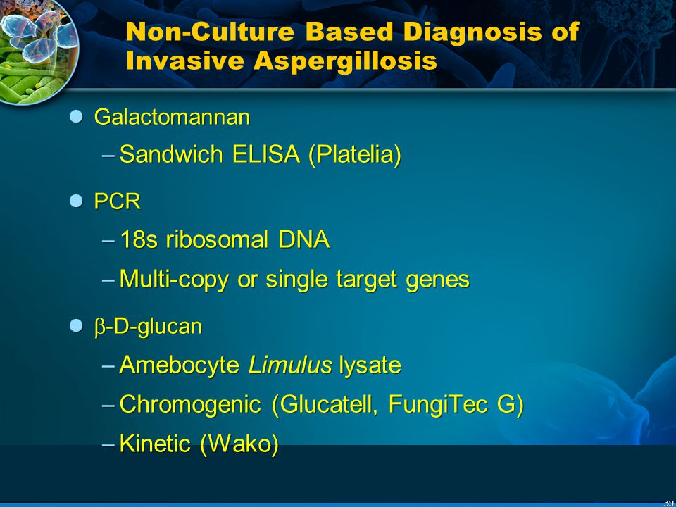 Non-Culture Based Diagnosis of Invasive Aspergillosis