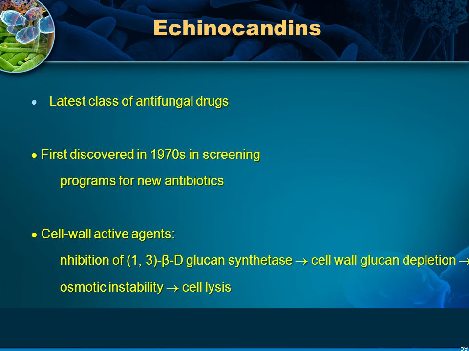 Echinocandins Latest class of antifungal drugs