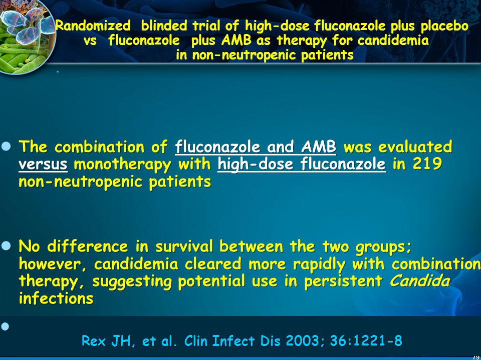 Randomized blinded trial of high-dose fluconazole plus placebo vs fluconazole plus AMB as therapy for candidemia in non-neutropenic patients .