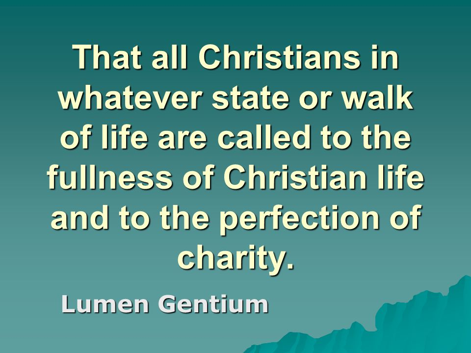 That all Christians in whatever state or walk of life are called to the fullness of Christian life and to the perfection of charity.