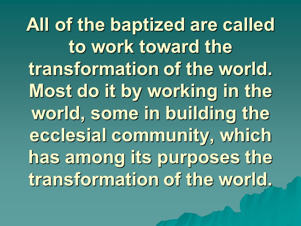 All of the baptized are called to work toward the transformation of the world.