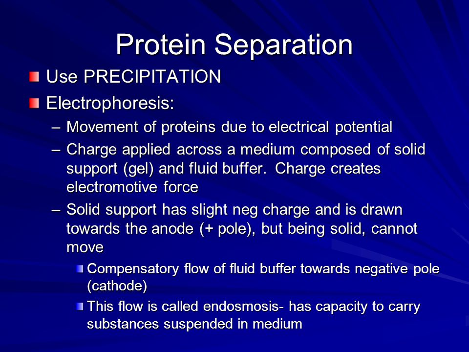 Protein Separation Use PRECIPITATION Electrophoresis: