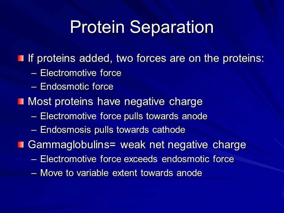 Protein Separation If proteins added, two forces are on the proteins: