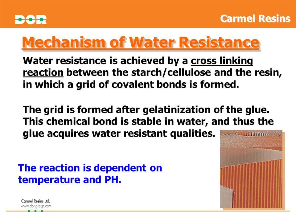 Mechanism of Water Resistance