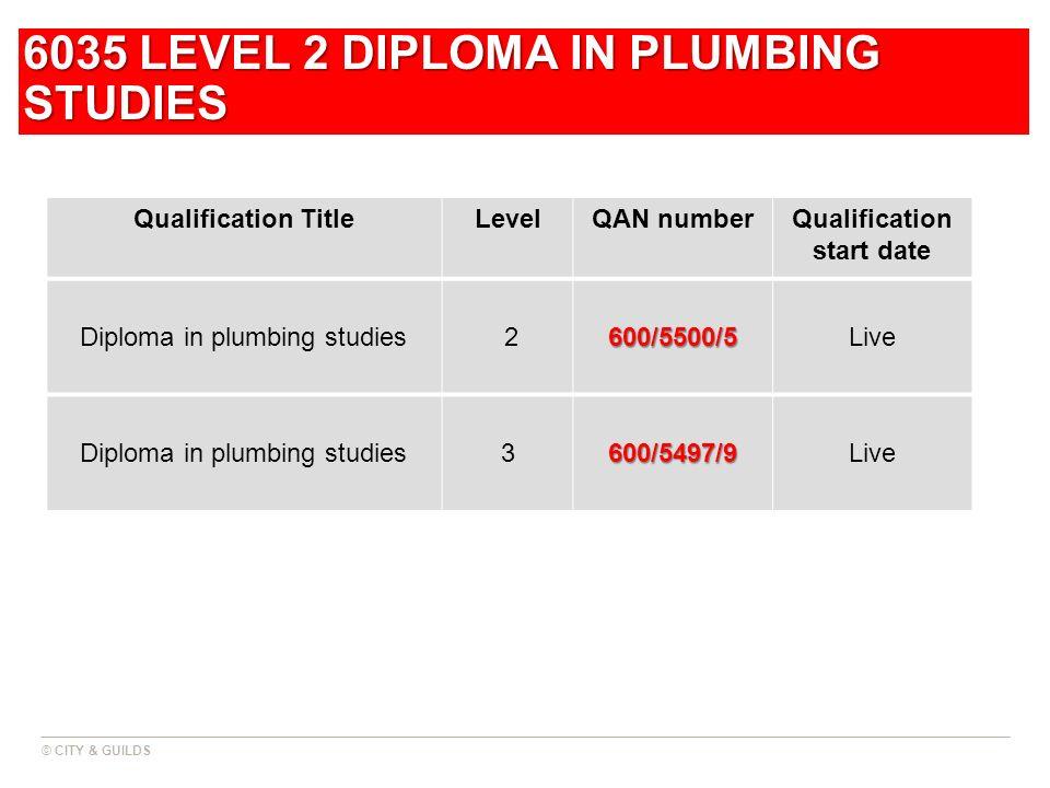 6035 LEVEL 2 DIPLOMA IN PLUMBING STUDIES