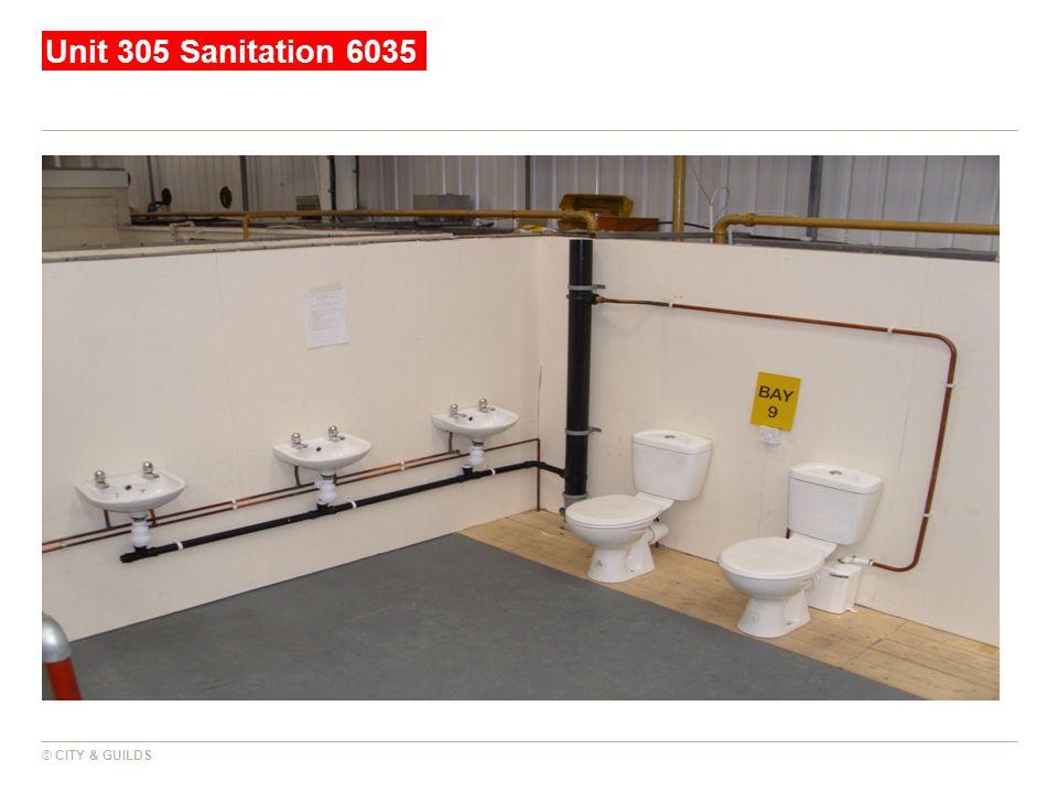 Unit 305 Sanitation 6035 © CITY & GUILDS