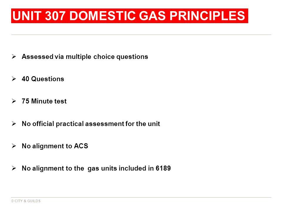 Unit 307 domestic gas principles