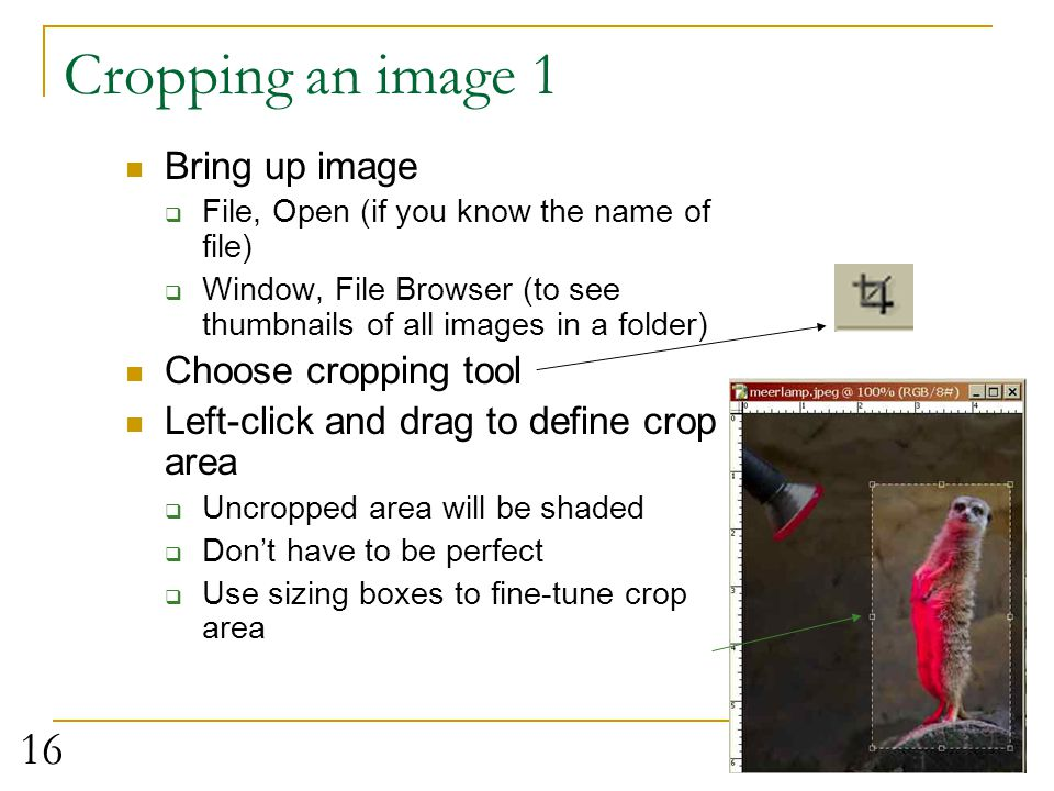 Cropping an image 1 Bring up image Choose cropping tool