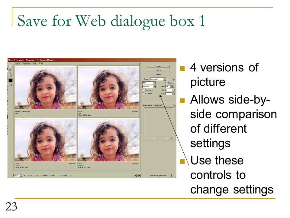 Save for Web dialogue box 1