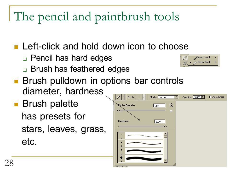 The pencil and paintbrush tools