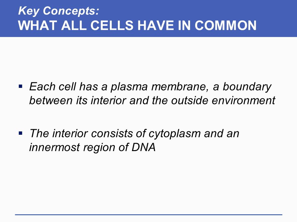 Key Concepts: WHAT ALL CELLS HAVE IN COMMON