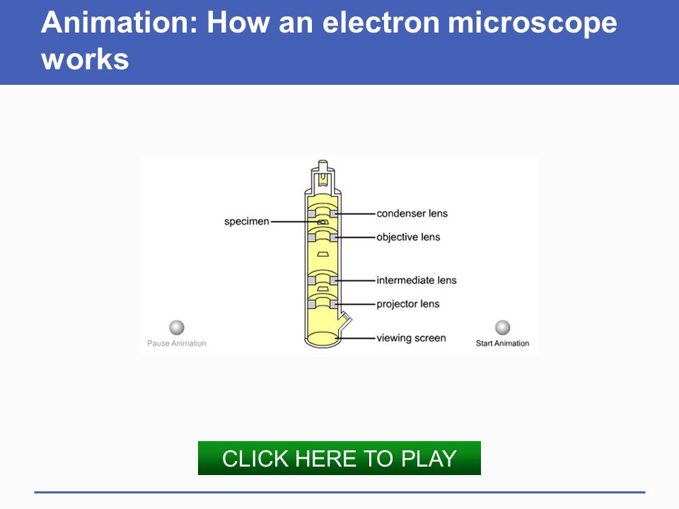 Animation: How an electron microscope works
