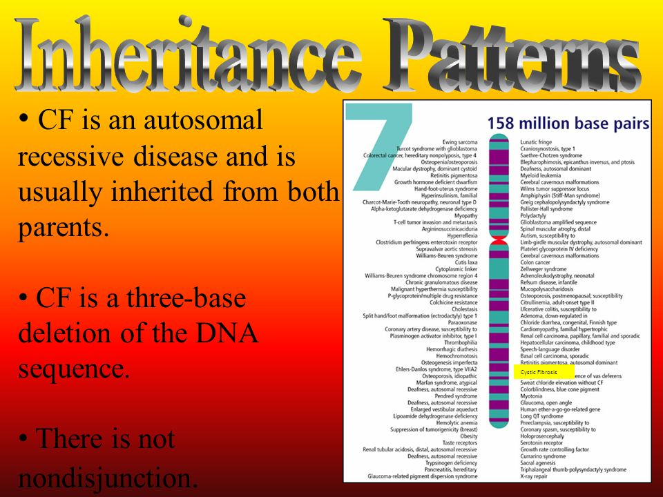 Inheritance Patterns CF is an autosomal recessive disease and is usually inherited from both parents.