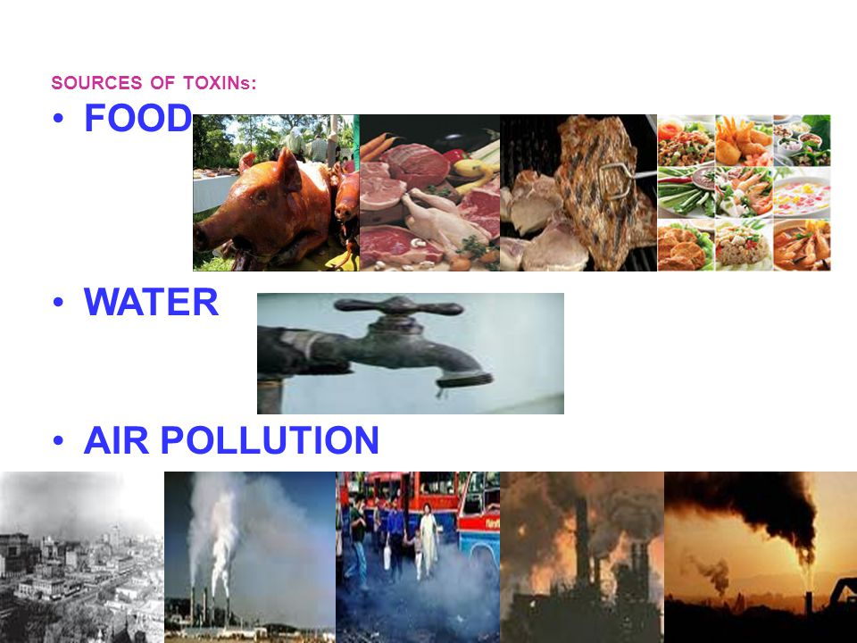 SOURCES OF TOXINs: FOOD WATER AIR POLLUTION