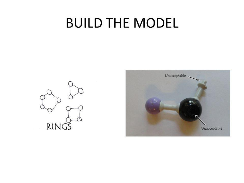 BUILD THE MODEL