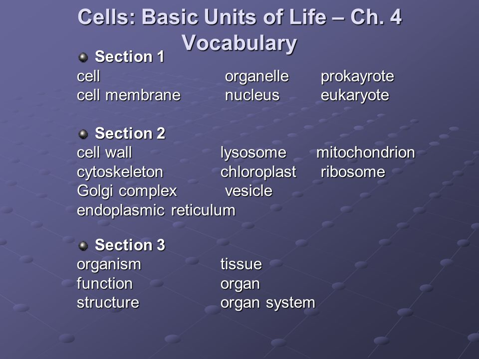 Cells: Basic Units of Life – Ch. 4 Vocabulary